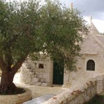 Imagines to live in a Trullo 12