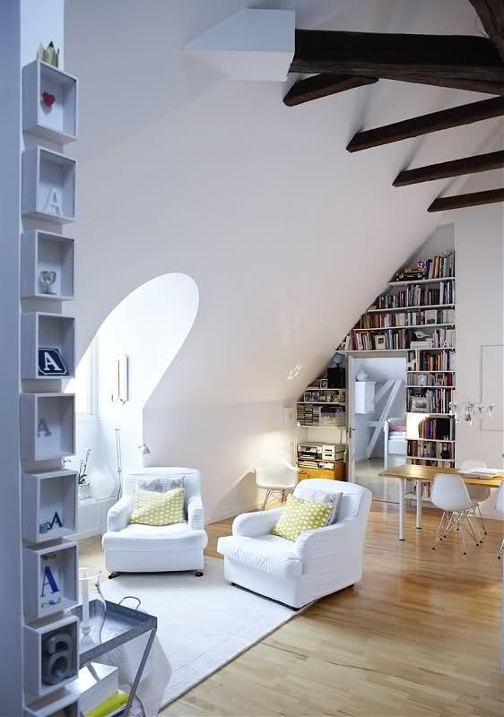 attic-design