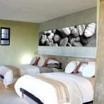 The Olive Exclusive Boutique Hotel 14
