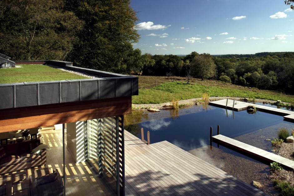 New Forest House by PAD studio 12