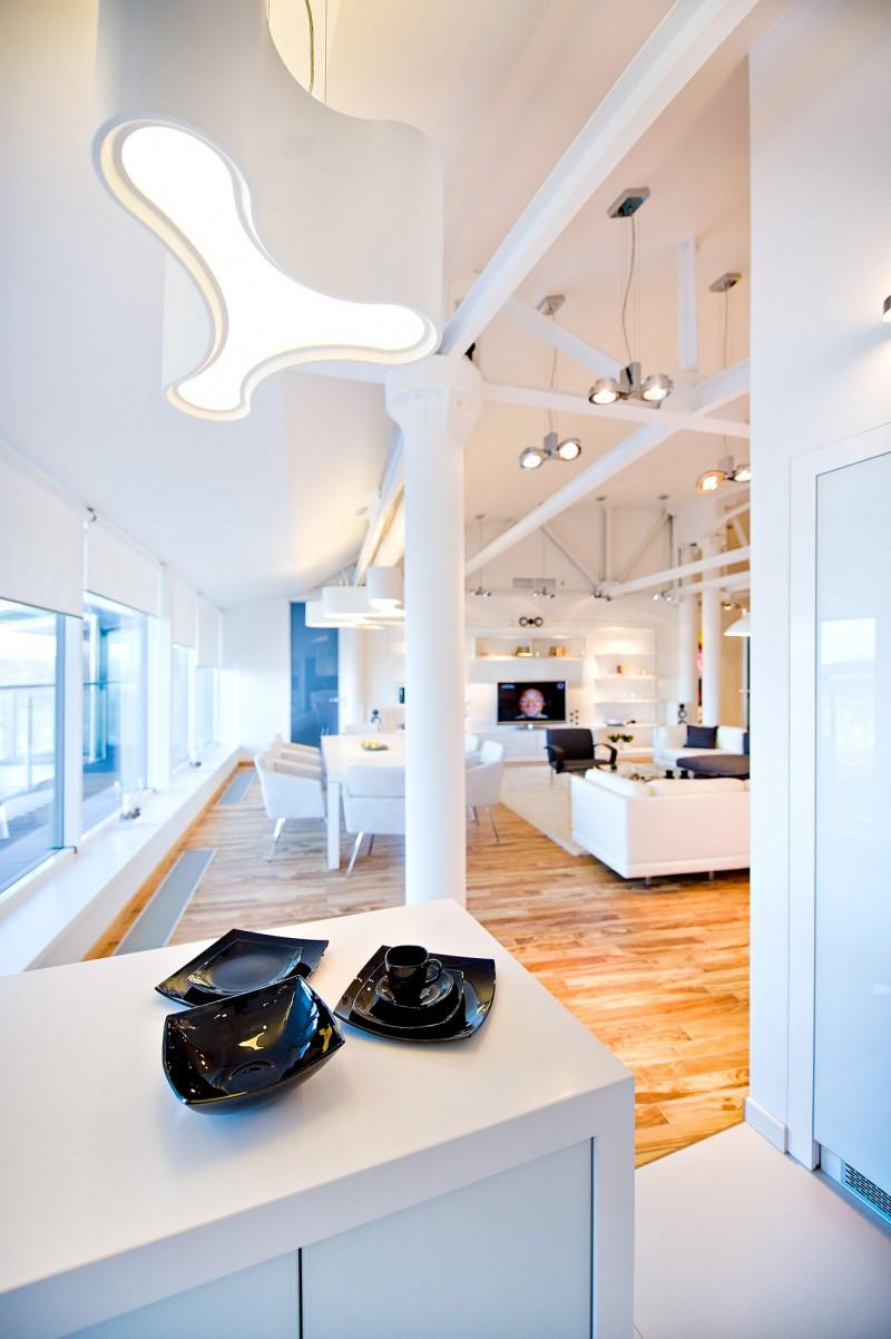 Loft Apartment by Grosu Art Studio 08