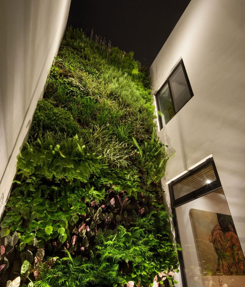 Casa Ming by LGZ Taller de Arquitectura 18