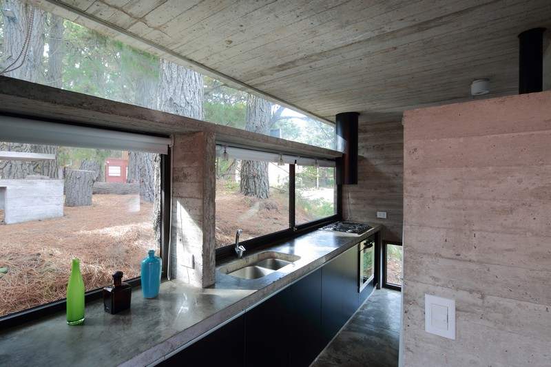Pedroso House by María Victoria Besonías and Luciano Kruk 15