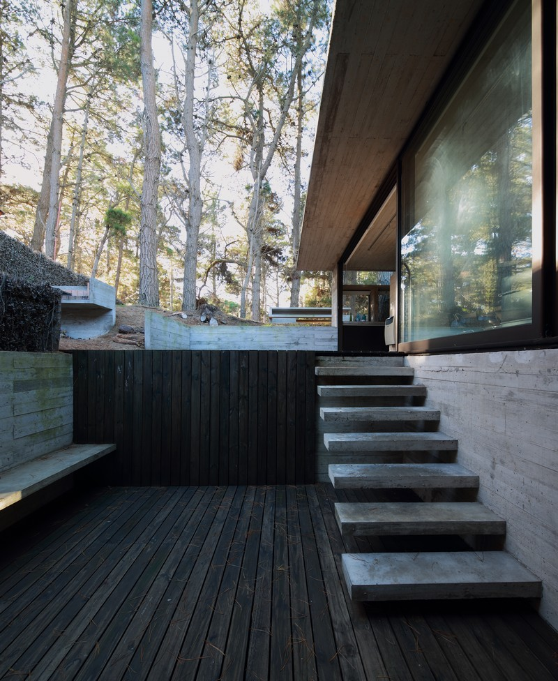 Pedroso House by María Victoria Besonías and Luciano Kruk 16