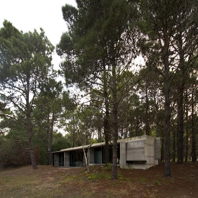 SV House by Luciano Kruk 23