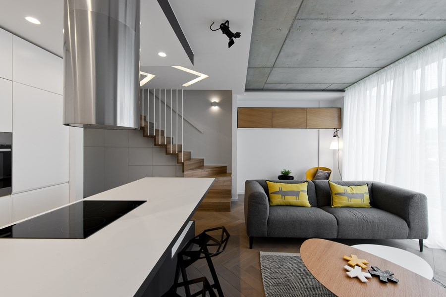 Butas River loft by In Arch 03