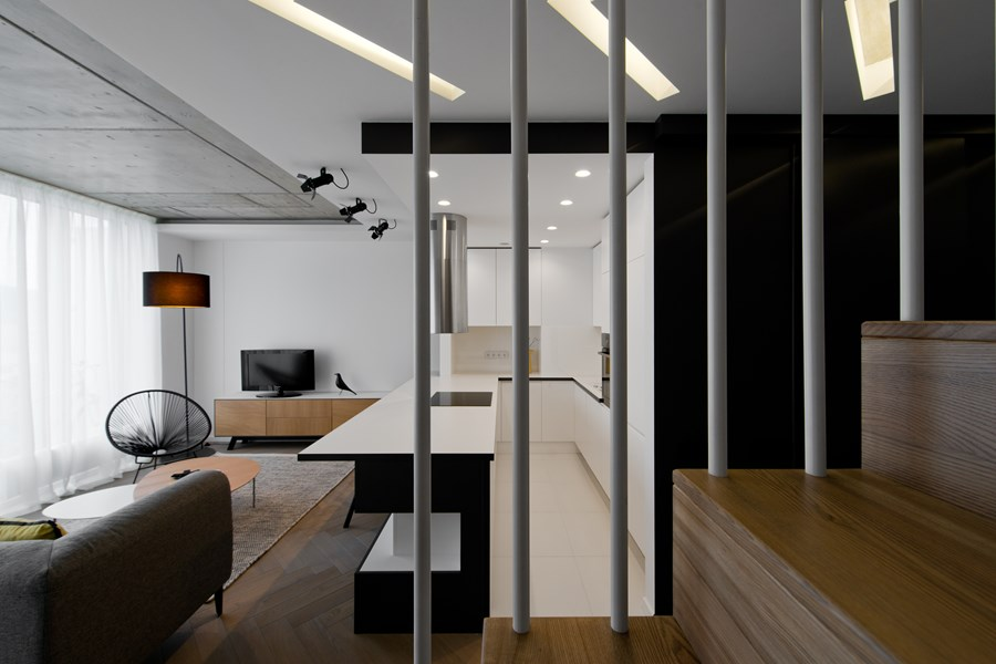 Butas River loft by In Arch 04