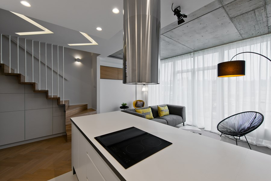 Butas River loft by In Arch 06