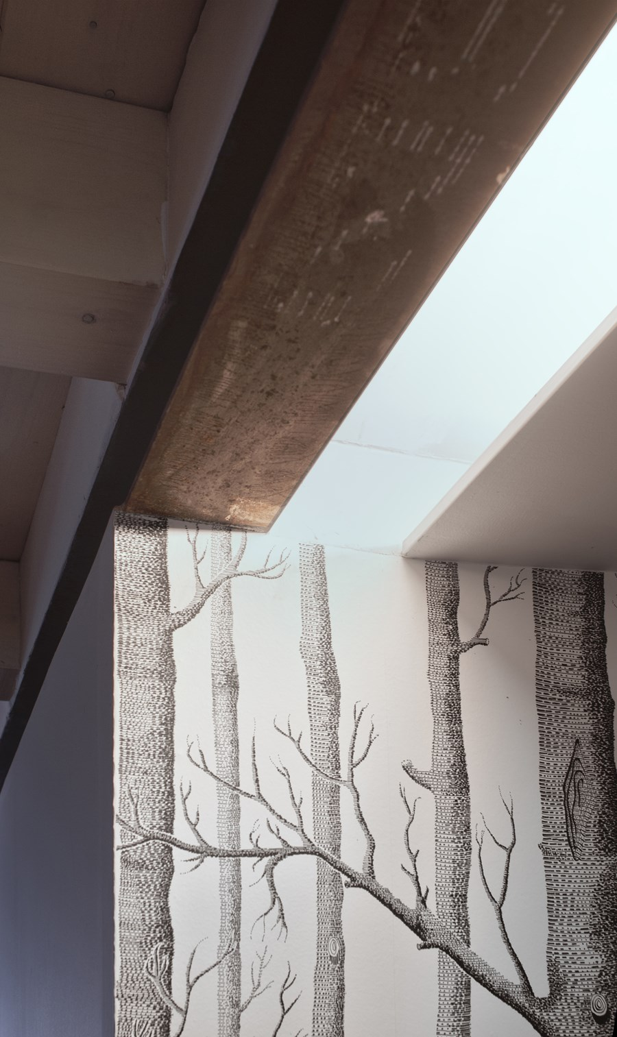 CPR attic refurbishment and extension by Piùerre 16