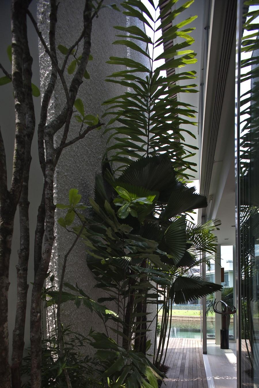 Sun Cap House by Wallflower Architecture + Design 12