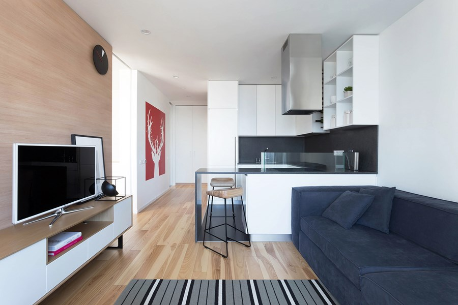 Apartment with a deer by Lugerin Architects 01
