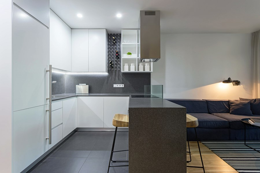 Apartment with a deer by Lugerin Architects 03