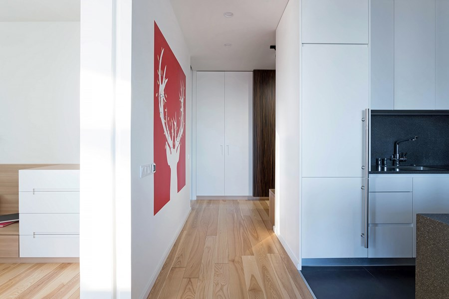 Apartment with a deer by Lugerin Architects 06